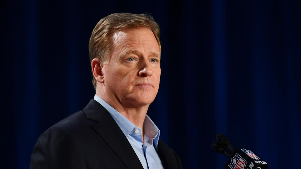 Goodell: NFL Won't Release Findings into WFT Investigation