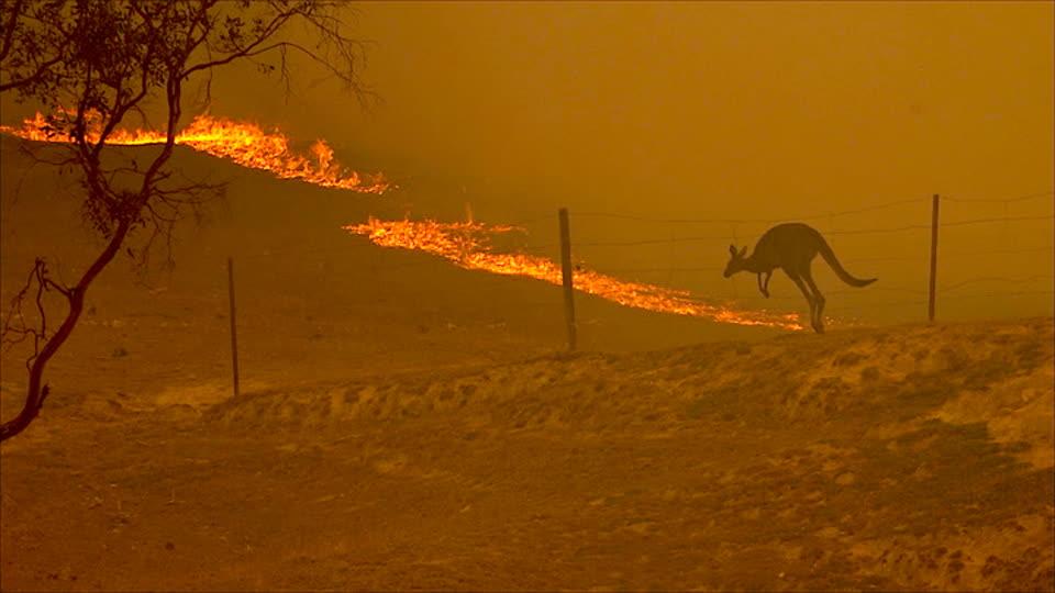 Angry Planet S01 E05 - Burning Australia
