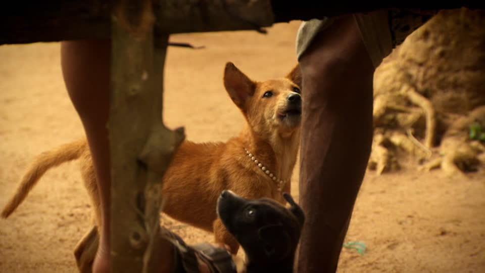 My Sri Lanka S01 E02 - Journey Inland