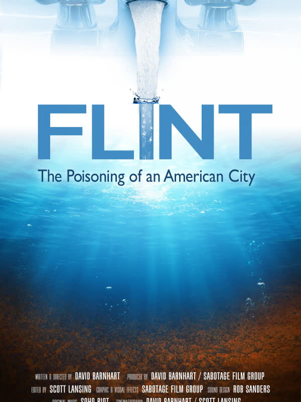 Flint: The Poisoning of an American City
