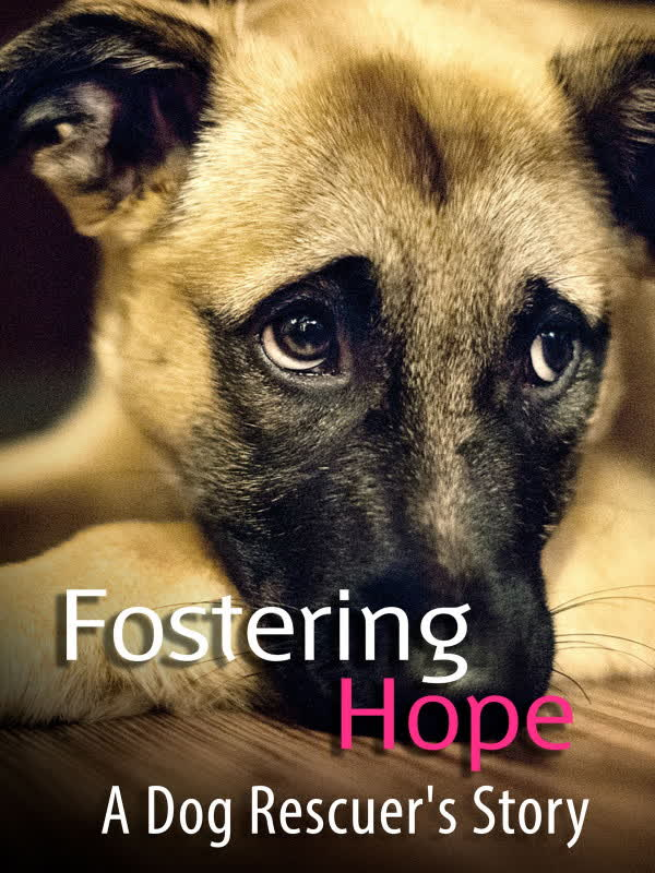 Fostering Hope: A Dog Rescuer's Story